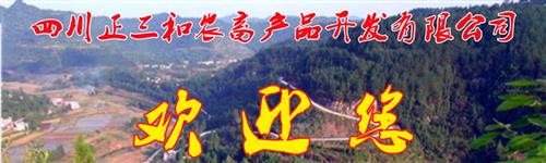 全景图1.png